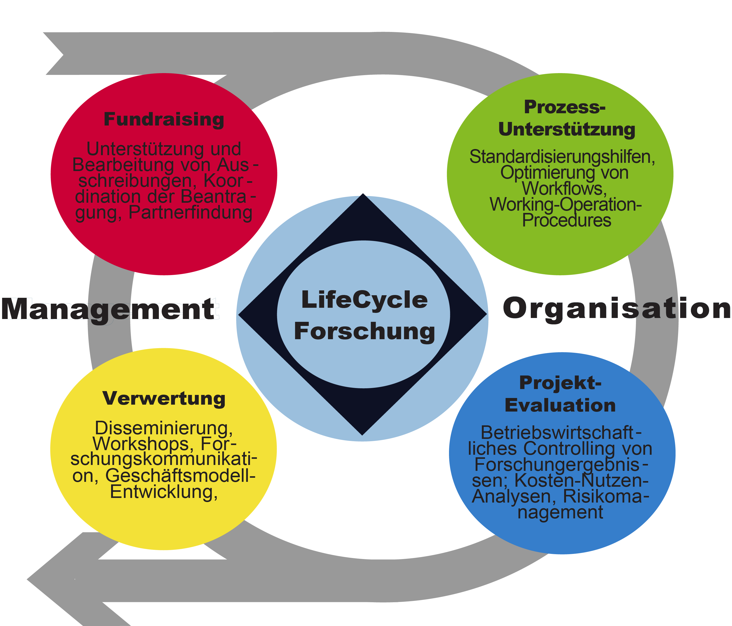 Life-Cycle-Forschung